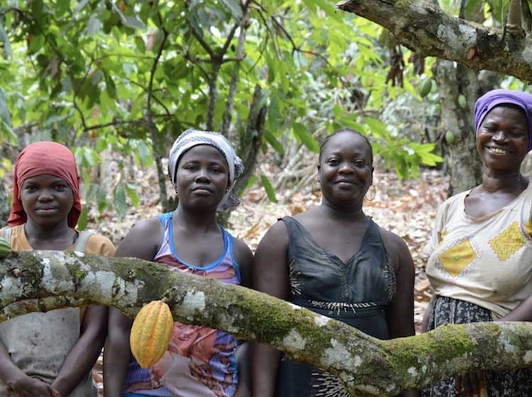 New Report Highlights Need for Gender Equality to Achieve Agricultural Growth Goals in...